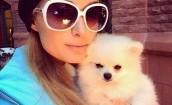 Paris Hilton odpoczywa na nartach