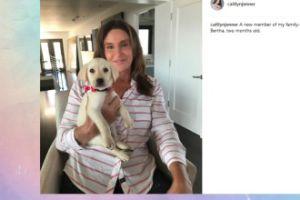 Caitlyn Jenner ma nowego pieska (FOTO)