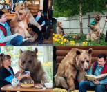 Małżeństwo Rosjan mieszka i je przy stole z... niedźwiedziem! (ZDJĘCIA)