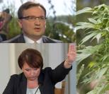Sejm przyjął ustawę o medycznej marihuanie. Za 440 posłów, przeciw... KEMPA I ZIOBRO