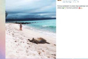Jessica Mercedes pozuje z żółwiem (FOTO)