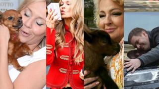 Celebryci przytulają samochody, buty, drzewa i... kozy! Tak świętują Dzień Przytulania? (ZDJĘCIA)
