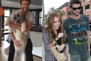 Miley pomogła Liamowi adoptować psa!