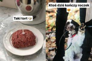 """Kasia Tusk zrobiła psu """"tort"""""""