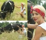 Agnieszka Szulim... doi krowę (ZDJĘCIA)
