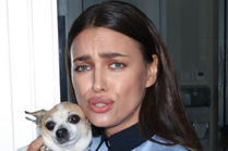 Irina promuje adopcje psów! - 5c95100546a1c95da15adbb2b97af80867c6ad2c_300x200