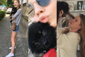 Poznajcie nowego celebrytę, Czarka Lisa... psa Igi Lis! (ZDJĘCIA)