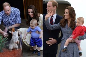 Australijski wielkouch nazwany na cześć... księcia Jerzego! (FOTO)