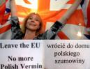 Zwolennicy Brexit do polskich emigrantów: