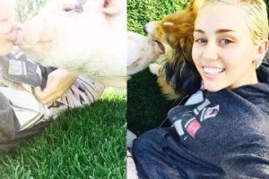 Miley Cyrus bawi się ze świnką (FOTO)