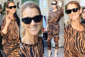 49-letnia Celine Dion w tygrysiej stylizacji idzie na siłownię w Paryżu (ZDJĘCIA)