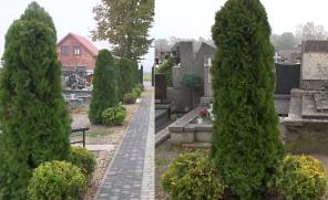 Mieszkańcy Woźniakowa zniesmaczeni dwuznacznym szpalerem na cmentarzu