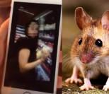 """Nastolatki zrelacjonowały na Snapchacie jak """"zagazowują"""" mysz: """"No to się, ku*wa w Hitlera pobawię. Komora gazowa sz*ato!""""(WIDEO)"""