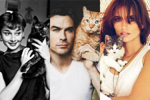 Dziś Dzień Kota! Clooney, Hepburn, Cruz i wiele innych gwiazd ze swoimi kotami (ZDJĘCIA)