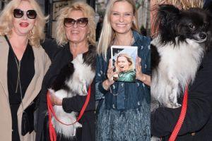 Kurowska, Kasprzyk i Shakira reklamują nową książkę Młynarskiej (ZDJĘCIA)