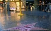Zdemolowano gwiazdę Donalda Trumpa w Hollywood