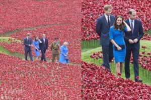 Kate, William i Harry w morzu czerwonych maków! (ZDJĘCIA)