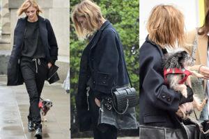 Anja Rubik na spacerze z psem i torebką za 6 TYSIĘCY (ZDJĘCIA)