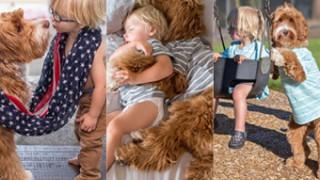 Pies został najlepszym przyjacielem adoptowanego chłopca (ZDJĘCIA)
