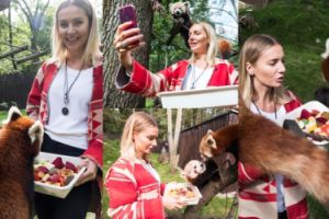 Wzruszona Szulim karmi i robi selfie ze zwierzętami w poznańskim zoo (ZDJĘCIA)