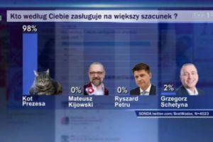 "Kot prezesa liderem sondażu w ""Wiadomościach TVP"""